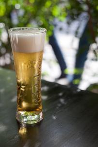 生ビールの写真素材 [FYI00102139]