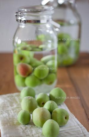 梅と梅酒の素材 [FYI00102315]