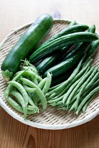 緑の夏野菜の写真素材 [FYI00102400]