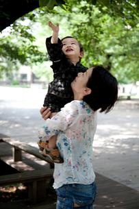 枝に手を伸ばす赤ちゃんの写真素材 [FYI00102411]