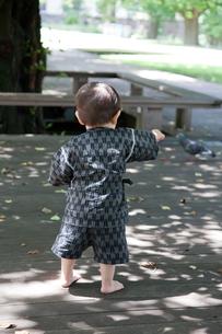 鳩を指差す赤ちゃんの写真素材 [FYI00102426]