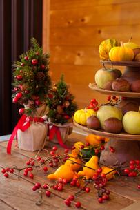 クリスマス飾りの写真素材 [FYI00102684]