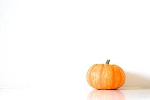 かぼちゃの素材 [FYI00102844]