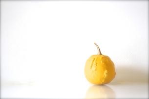 かぼちゃの素材 [FYI00102845]