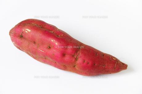 サツマイモの写真素材 [FYI00102875]