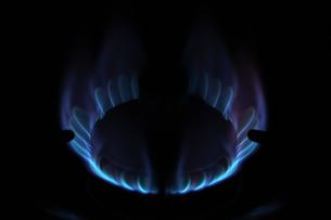 ガスコンロの炎の写真素材 [FYI00102911]