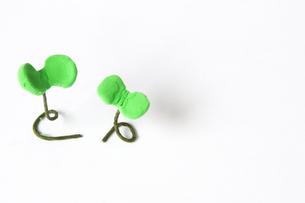 粘土で作った芽の写真素材 [FYI00102943]