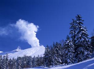 冬の火山と森の素材 [FYI00103188]
