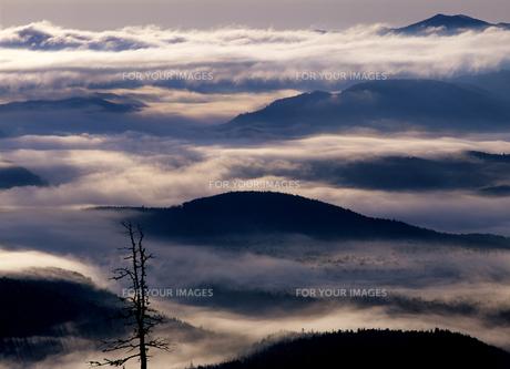 大雪山の雲海の素材 [FYI00103191]