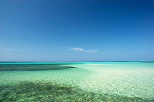 離島の水平線と珊瑚礁の素材 [FYI00103232]