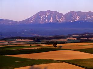夕暮れの丘と山の写真素材 [FYI00103275]