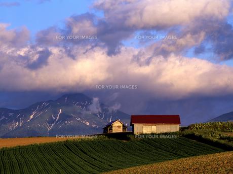 春の小屋と富良野岳の素材 [FYI00103284]