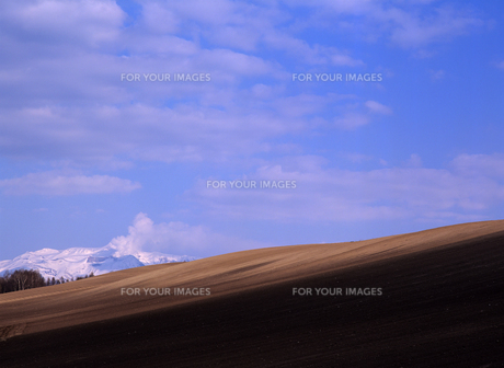 火山と青空の素材 [FYI00103288]