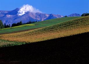 丘と火山の素材 [FYI00103290]
