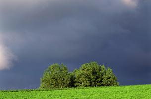 牧場と雨雲の素材 [FYI00103312]