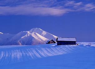 雪原と冬の富良野岳の素材 [FYI00103325]