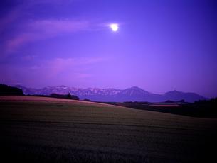 月明かりの大地の素材 [FYI00103395]