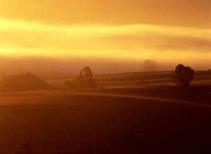 丘と流れる朝霧の写真素材 [FYI00103403]