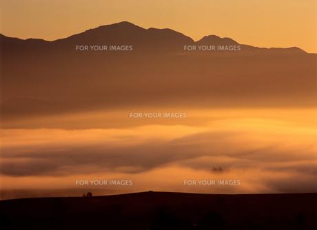 流れる朝霧と旭岳の写真素材 [FYI00103413]