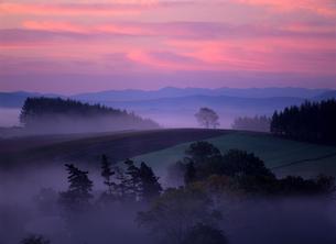 幻想の霧の丘の写真素材 [FYI00103415]