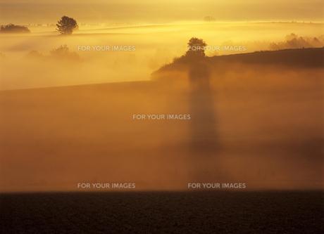 幻想の霧の丘の素材 [FYI00103416]