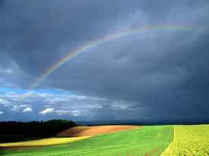 大地と虹の素材 [FYI00103430]