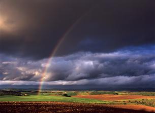大地と虹の素材 [FYI00103438]