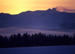 冬の朝霧と十勝岳の写真素材 [FYI00103454]