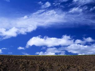 大地と雲の素材 [FYI00103462]