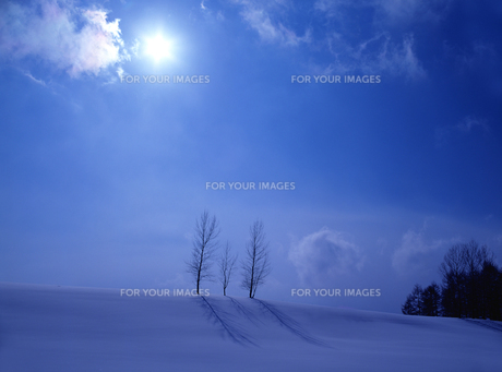 冬の丘と太陽の素材 [FYI00103468]
