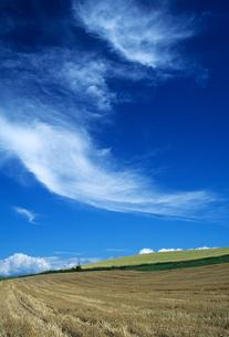 丘と夏雲の素材 [FYI00103480]