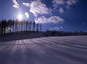 黄昏の雪原の素材 [FYI00103496]