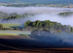 朝霧の朝の写真素材 [FYI00103540]
