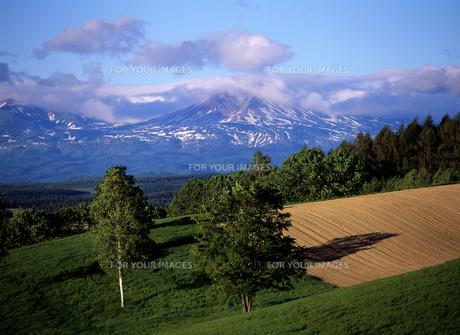 丘と残雪の山の素材 [FYI00103561]