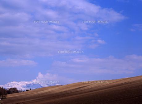 耕地と火山の素材 [FYI00103569]