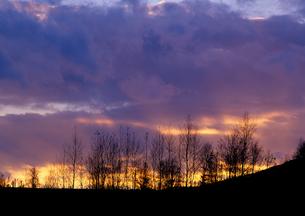夕雲と丘の写真素材 [FYI00103582]