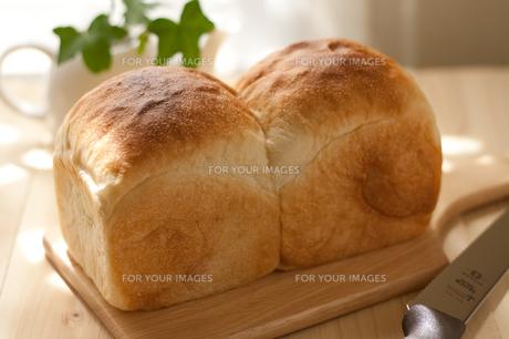 手作り食パンの写真素材 [FYI00103683]