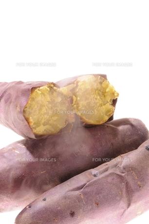 焼き芋の素材 [FYI00104006]