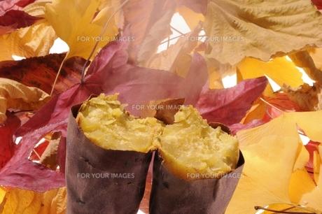 焼き芋と落ち葉の素材 [FYI00104007]