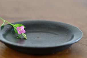 黒い陶器の皿と花の写真素材 [FYI00105481]