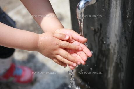 手洗いをする子供の写真素材 [FYI00105652]