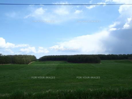 草原 空 風景の写真素材 [FYI00105822]