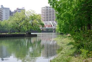 鉄橋の写真素材 [FYI00105840]
