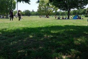休日の公園広場の素材 [FYI00105896]