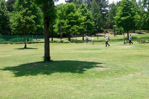 パターゴルフの写真素材 [FYI00105902]