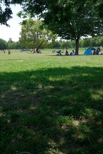 休日の公園広場の写真素材 [FYI00105910]