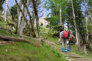 夏山登山の写真素材 [FYI00105936]