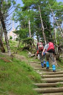 夏山登山の写真素材 [FYI00105943]
