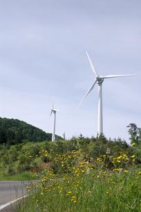 風力発電の風車の写真素材 [FYI00105955]