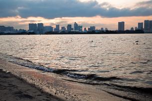 夕方の海とビル05の写真素材 [FYI00106440]